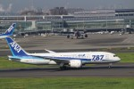 yuitaさんが、羽田空港で撮影した全日空 787-8 Dreamlinerの航空フォト(写真)