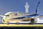 ひこーきさんが、羽田空港で撮影した全日空 787-9の航空フォト(写真)