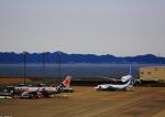 タミーさんが、中部国際空港で撮影したアンガラ・エアラインズ An-148-100Eの航空フォト(写真)