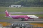 meijeanさんが、成田国際空港で撮影したピーチ A320-214の航空フォト(写真)