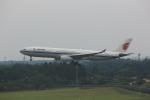 meijeanさんが、成田国際空港で撮影した中国国際航空 A330-343Xの航空フォト(写真)