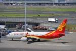 hirokongさんが、羽田空港で撮影した海南航空 737-86Nの航空フォト(写真)