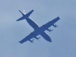 tetuさんが、札幌飛行場で撮影したカナダ軍 P-3C Orionの航空フォト(写真)