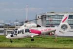 Mizuki24さんが、東京ヘリポートで撮影した東邦航空 AS365N2 Dauphin 2の航空フォト(写真)