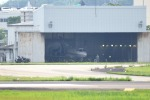 414404kazuさんが、名古屋飛行場で撮影した航空自衛隊 U-125 (BAe-125-800FI)の航空フォト(写真)