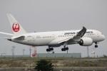 ドラパチさんが、羽田空港で撮影した日本航空 787-8 Dreamlinerの航空フォト(写真)