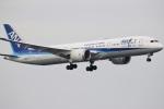 ドラパチさんが、羽田空港で撮影した全日空 787-9の航空フォト(写真)