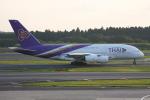いっとくさんが、成田国際空港で撮影したタイ国際航空 A380-841の航空フォト(写真)