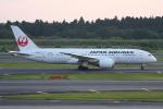 いっとくさんが、成田国際空港で撮影した日本航空 787-8 Dreamlinerの航空フォト(写真)