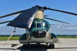 パンダさんが、千歳基地で撮影した航空自衛隊 CH-47J/LRの航空フォト(写真)