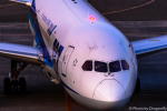 dragonflyさんが、新千歳空港で撮影した全日空 787-8 Dreamlinerの航空フォト(写真)