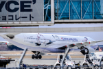 dragonflyさんが、新千歳空港で撮影したチャイナエアライン A330-302の航空フォト(写真)