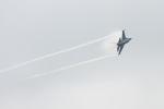mameshibaさんが、千歳基地で撮影したアメリカ空軍 F-16CM-50-CF Fighting Falconの航空フォト(写真)