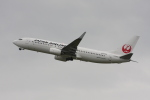 いっとくさんが、関西国際空港で撮影した日本航空 737-846の航空フォト(写真)