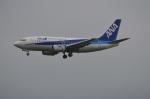 amagoさんが、成田国際空港で撮影したANAウイングス 737-54Kの航空フォト(写真)