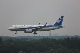 meijeanさんが、成田国際空港で撮影した全日空 A320-271Nの航空フォト(写真)