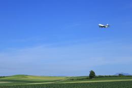 旭川空港 - Asahikawa Airport [AKJ/RJEC]で撮影された旭川空港 - Asahikawa Airport [AKJ/RJEC]の航空機写真