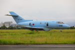 じゃりんこさんが、浜松基地で撮影した航空自衛隊 U-125A(Hawker 800)の航空フォト(写真)