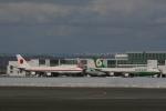 hachiさんが、新千歳空港で撮影した航空自衛隊 747-47Cの航空フォト(写真)