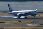 TAKAHIDEさんが、羽田空港で撮影した全日空 787-8 Dreamlinerの航空フォト(写真)