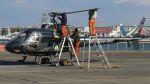 航空見聞録さんが、舞洲ヘリポートで撮影した東海技研 AS350B Ecureuilの航空フォト(写真)
