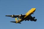 ミソカツさんが、羽田空港で撮影した全日空 747-481(D)の航空フォト(写真)