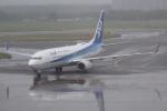 木人さんが、新千歳空港で撮影した全日空 737-881の航空フォト(写真)