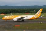 なごやんさんが、新千歳空港で撮影したスクート 787-8 Dreamlinerの航空フォト(写真)