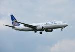 mojioさんが、成田国際空港で撮影したユナイテッド航空 737-824の航空フォト(写真)
