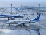 6500さんが、中部国際空港で撮影した全日空 737-881の航空フォト(写真)
