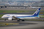 kikiさんが、羽田空港で撮影した全日空 787-8 Dreamlinerの航空フォト(写真)