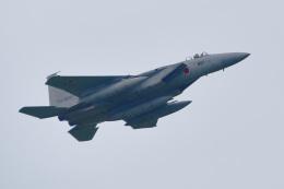 パンダさんが、千歳基地で撮影した航空自衛隊 F-15J Eagleの航空フォト(写真)