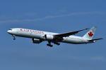 harahara555さんが、羽田空港で撮影したエア・カナダ 777-333/ERの航空フォト(写真)