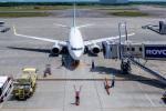dragonflyさんが、新千歳空港で撮影した全日空 737-781の航空フォト(写真)