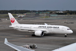 turenoアカクロさんが、成田国際空港で撮影した日本航空 787-8 Dreamlinerの航空フォト(写真)
