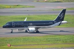 SKY☆101さんが、羽田空港で撮影したスターフライヤー A320-214の航空フォト(写真)