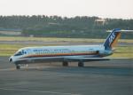 プルシアンブルーさんが、仙台空港で撮影した日本エアシステム DC-9-41の航空フォト(写真)