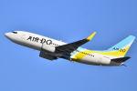 リョウさんが、羽田空港で撮影したAIR DO 737-781の航空フォト(写真)