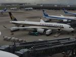 さゆりんごさんが、羽田空港で撮影したシンガポール航空 A350-941XWBの航空フォト(写真)