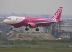 VICTER8929さんが、仙台空港で撮影したピーチ A320-214の航空フォト(写真)