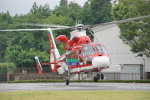 w_h1011さんが、秩父防災基地で撮影した埼玉県防災航空隊 AS365N3 Dauphin 2の航空フォト(写真)