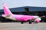 HK Express43さんが、伊丹空港で撮影したピーチ A320-214の航空フォト(写真)