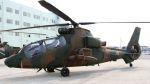 航空見聞録さんが、静浜飛行場で撮影した陸上自衛隊 OH-1の航空フォト(写真)