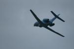kij niigataさんが、新潟西港で撮影した航空自衛隊 U-125A(Hawker 800)の航空フォト(写真)