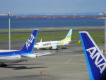 Seanさんが、羽田空港で撮影したAIR DO 737-781の航空フォト(写真)