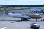 こじゆきさんが、ドモジェドヴォ空港で撮影したガルフ・エア A320-214の航空フォト(写真)