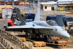ちゅういちさんが、横須賀基地で撮影したアメリカ海軍 F/A-18E Super Hornetの航空フォト(写真)