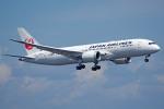 apphgさんが、羽田空港で撮影した日本航空 787-8 Dreamlinerの航空フォト(写真)