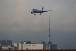 VIPERさんが、羽田空港で撮影した中国南方航空 A320-214の航空フォト(写真)