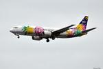 apphgさんが、羽田空港で撮影したスカイネットアジア航空 737-4M0の航空フォト(写真)